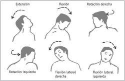 dolor espalda cervicalgia